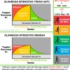 Afterburn Effect Infographic