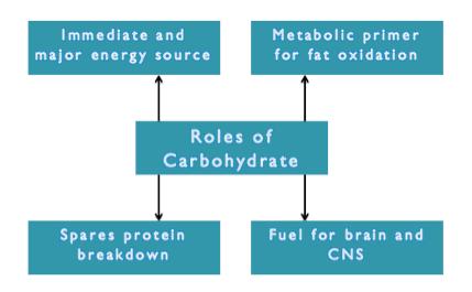 Carb Roles